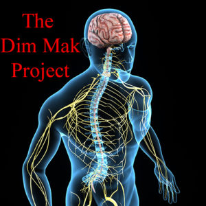 The Dim Mak Project Courses