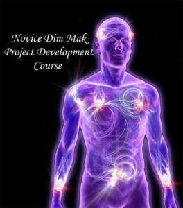Novice Dim Mak Project Development Course