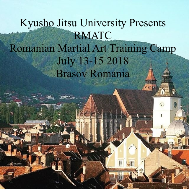 The Romanian Martial Art Training Camp